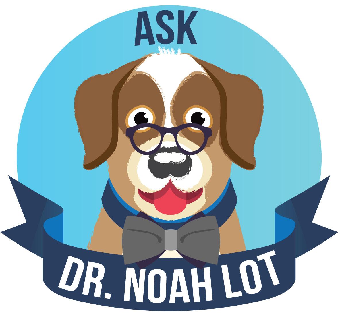 Image: Introducing Dr. Noah Lot